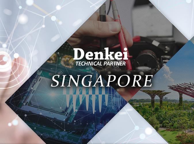 Singapore Nihon Denkei Co ,Ltd  | Singapore Nihon Denkei Co